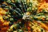 Ugly pumpkin head (U Sq Farmers Mkt- Sat 11 1 08)