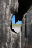 Peep hole (Mon 9 15 08)