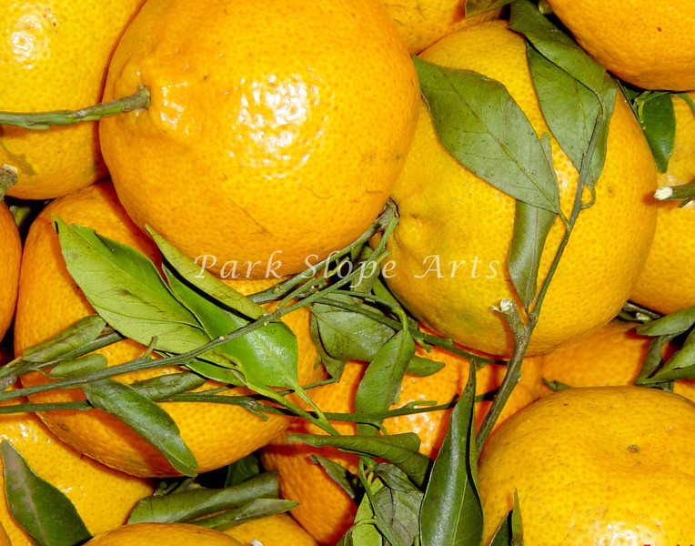 Fruits and Vegatables-00910