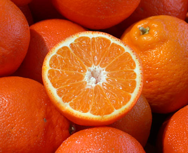 OC2003-oranges