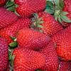 OC2003-strawberries