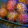 Rambutans. Gelled flashes left and right. Blue to the right and yellow to the left.