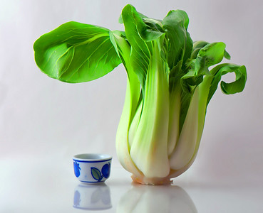 Small bok choy, smaller tea cup