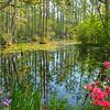 Cypress Gardens in Spring
