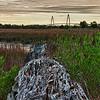 Ravenel Bridge and Marsh