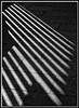 Light Pattern