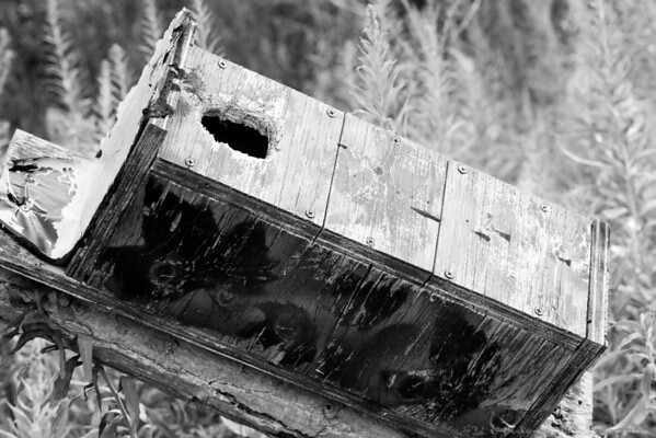 Aug. 4th, 2007<br /> This bird house was left abandoned. The mark of time left some nice imprints and textures.