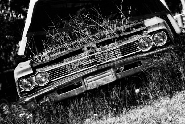 Biofuel - This car must have switch to vegetable base fuel, the engine was cleaner but the repair shop must not be able to figure it out, it has been there for years! Have a great day- JY