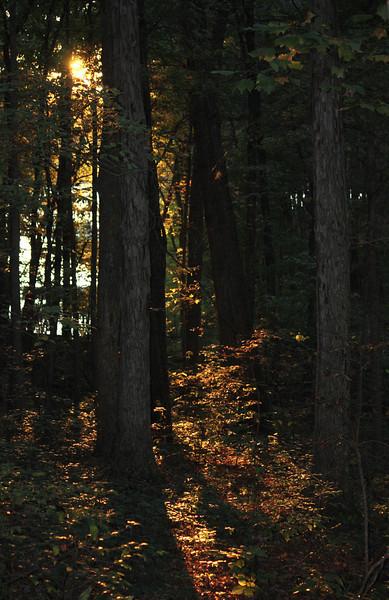 Sunset / Lake Lanier, GA