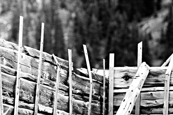 Independence, Colorado is a ghost town located just west of Independence Pass and served as a mining town in the 1880's. Because of the harsh and long winters and the bust of good mining opportunities, the town was eventually abandoned, with many seeking better mining opportunities in Aspen and elsewhere.