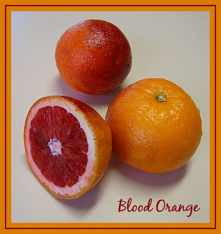 2 and one half blood oranges [borders, text]