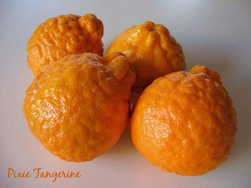 00aFavorite Pixie tangerines [text]