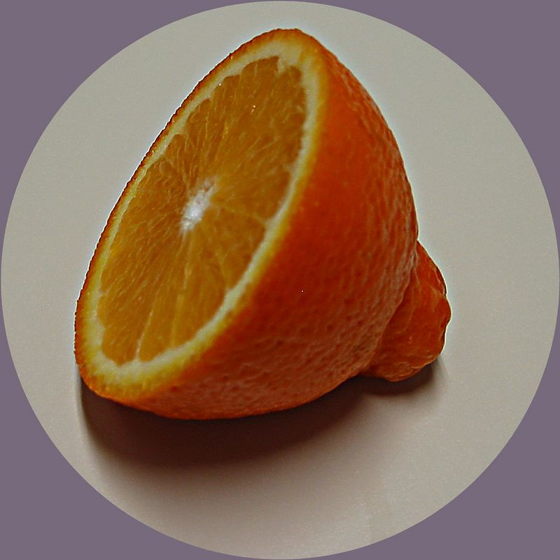 Minneola half 2 [circular crop]