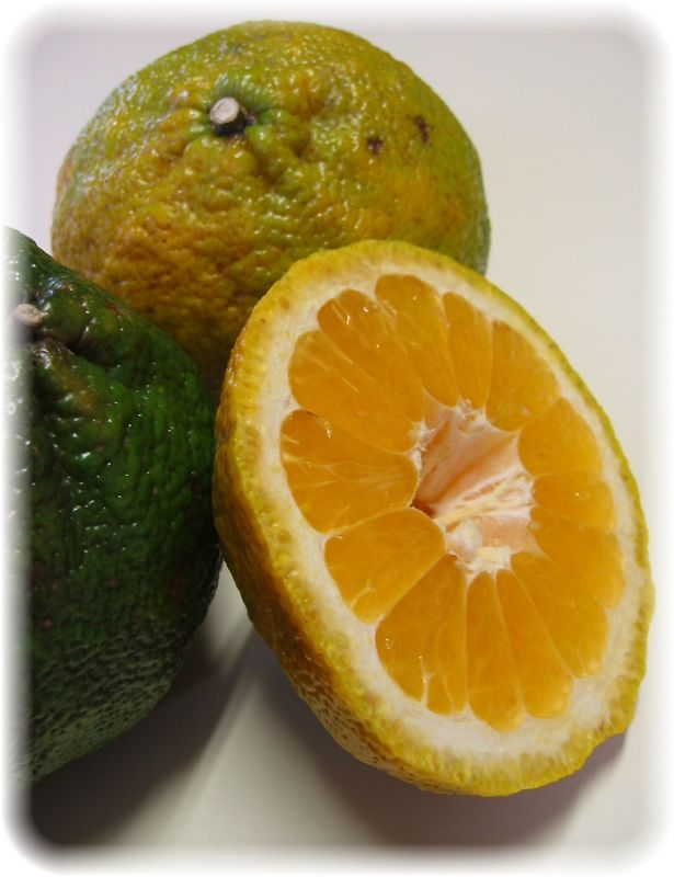 00aFavorite Ugli Fruit - 1 intact, 1 cut 1 green partially in view [borderfade4]