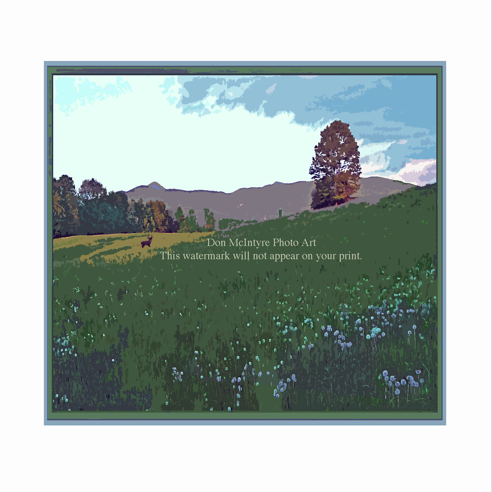"""Meadow"" (Square, 2)"
