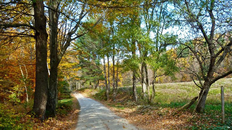 Goat Farm Road, #4