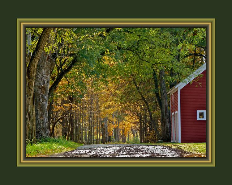 Goat Farm Road, #2