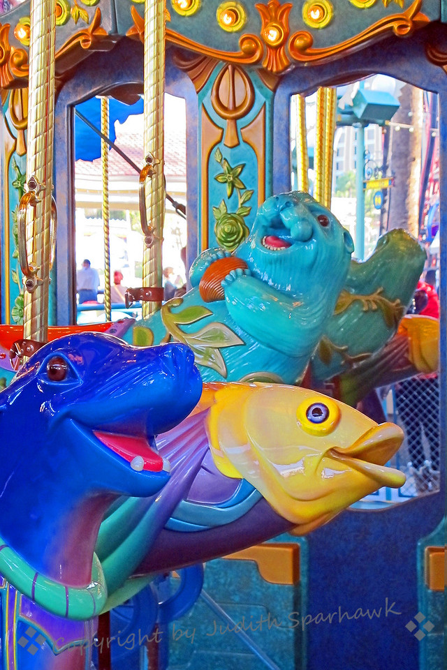 Carousel View ~ Another view of these three underwater creatures from the carousel at Disney's California Adventure Park.