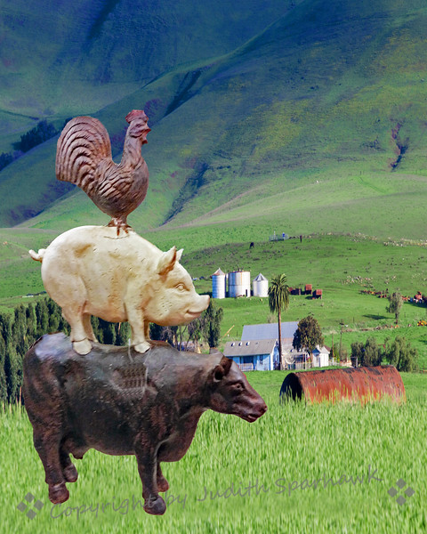 A Chicken,  a Pig and a Cow Walked into the Barnyard...