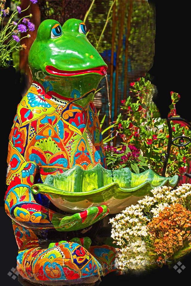 Froggie Fountain