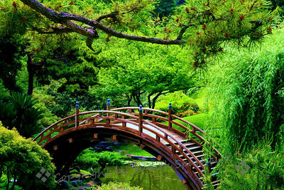 The Wishing Bridge ~ This Bridge Is In The Japanese Garden At Huntington  Library Gardens In