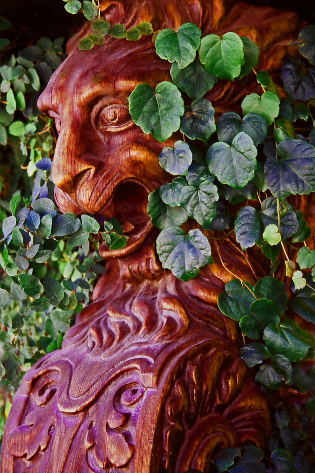 The Lion Sentry ~ Two carved lions, somewhat overgrown with creeping fig, adorn the outside of a shop in Solvang, California.