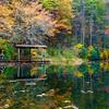 dupont-lake-fall-sonia-bike