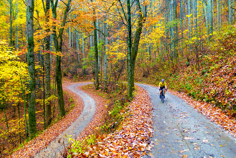 cycling-pisgah-forest-mills-river