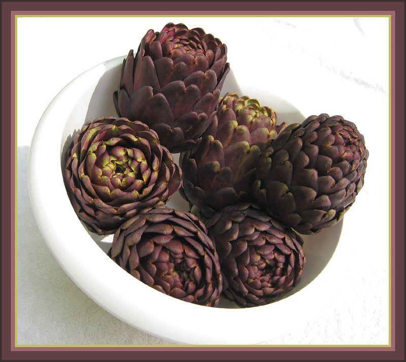 Bowl of 6 Purple Artichokes [borders]