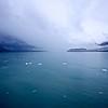 Glacier Bay - July 2015