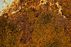 Rust patch on Storage Trailer