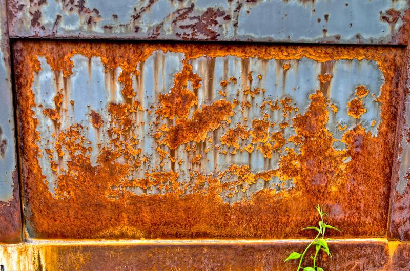 Rusty Panel