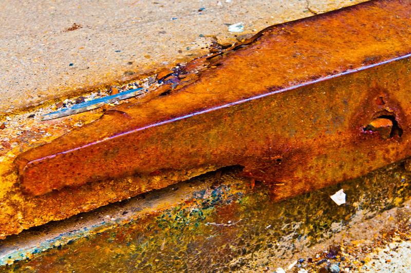 Hungry Rust Gator