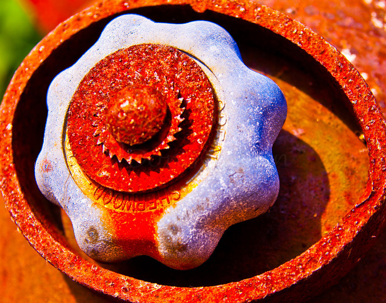 A Rooster Sculpture's eye.