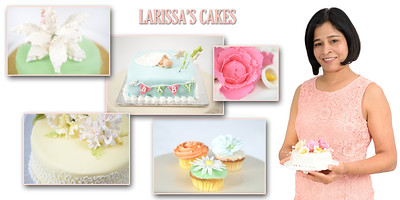 LARISSA'S CAKES