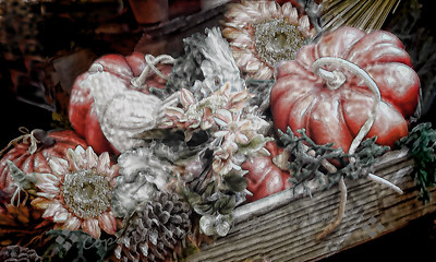 Autumn Harvest II