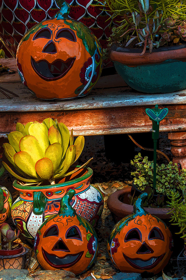 Halloween's a Coming ~ These ceramic jack-o-lanterns were in a garden gift shop recently.  I liked their cheery smiles.