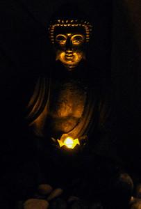 Tara Glow (3)