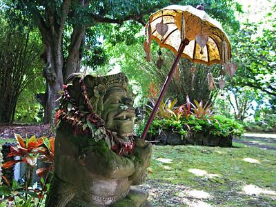 HI 2011 Maui 49