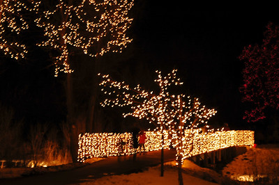 DBG Lights 2008 (7)