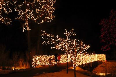 DBG Lights 2008 (7)