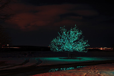 DBG Lights 2008 (4)