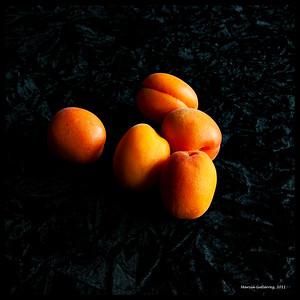 Apricots 061110_0009 14x14 border
