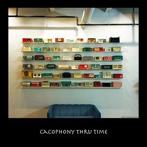 Cacophony thru Time 110719_7008 16x16