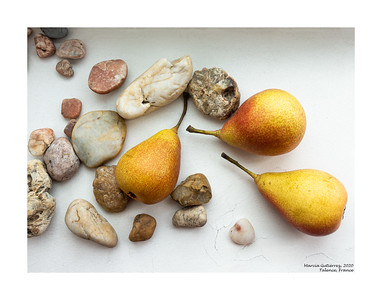 French Pears and Vineyard Stones