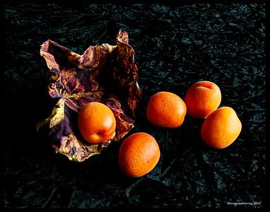 Apricots & Leaf 091110_0046 11x14 border