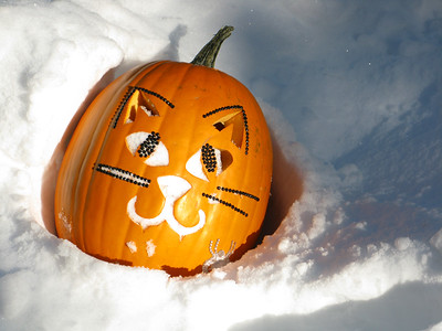 Halloween 2011 104