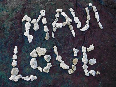 HI 2011 Maui 293 color swap