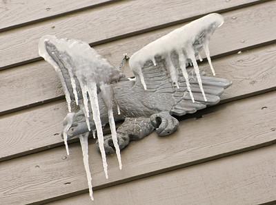 Snows 2012-13 11