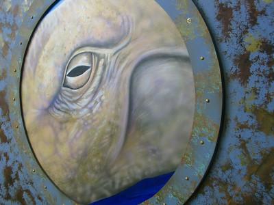 CO 2011 05 Denver Aquarium 2